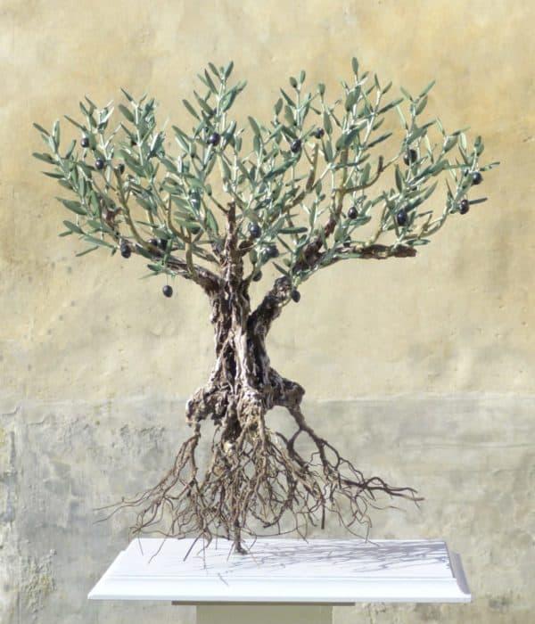 L'olivier dans tous ses états